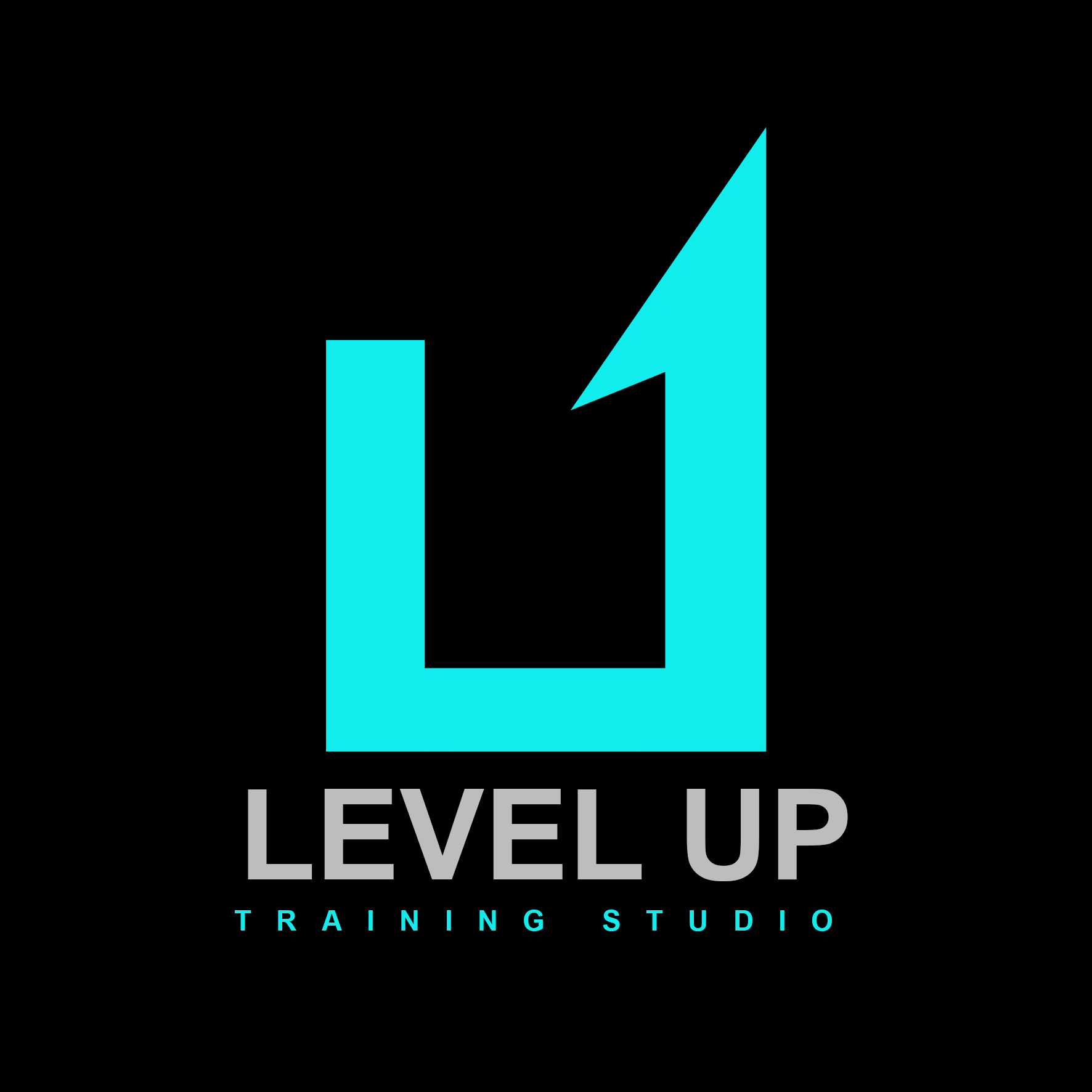 Level Up  Training Studio